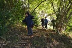 9 au 11/11/2013 : Week-end en Cévennes